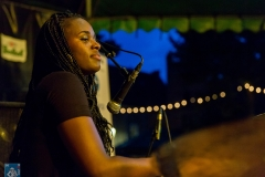 Blues & Roots @Peter Putters www.denozem.com-3394