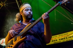 Blues & Roots @Peter Putters www.denozem.com-3410